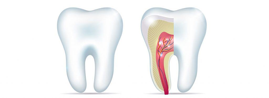 Myths on Root Canal Treatment in Dubai